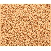 Seedbead 10/0 Metallic Gold Matte Terra Color